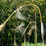 Zwirbelstroh und Blätterlinge – Windobjekte im Botanischen Garten St. Gallen