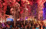 Zauberwald Lenzerheide mit Besucherrekord beendet