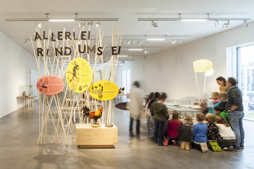 """Naturmuseum St. Gallen mit """"Allerlei rund ums Ei"""" zu den Ostertagen"""