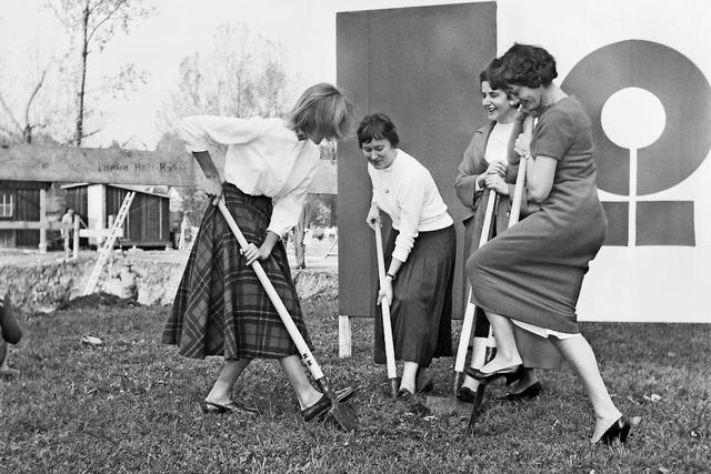 Jubiläum: Vor 60 Jahren bauten sich Frauen im Zürichsee eine Insel